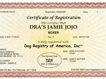 Register My Dog | Dog Registration Papers | Dog Registry of