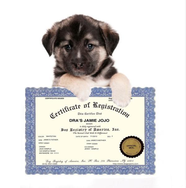 Register My Dog Dog Registration Papers Dog Registry Of America